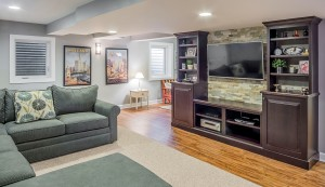 basement remodeling downers grove